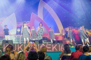 Kukuricek_2016_185